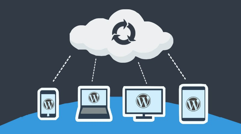 Best WordPress Backup Plugin Options
