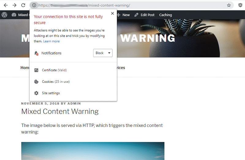 Mixed Content Warning in WordPress: Quick Fixes